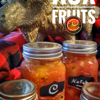 Ketchup aux fruits: Le condiment parfait...