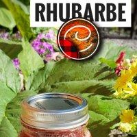 Confiture fraise & rhubarbe / Classique d'été en région...