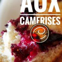 Muffins aux camerises: Hommage à ce méconnu petit fruit de région...
