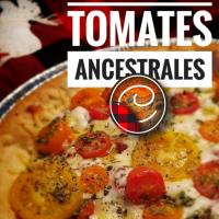 Tarte aux tomates ancestrales: Délice tomaté...